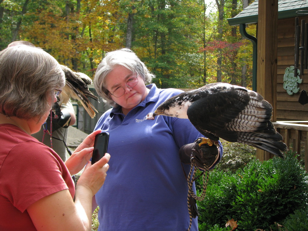 Laura Edmunds with Zulu the African Augur Buzzard