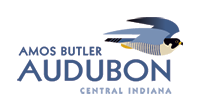 logo-amos-butler