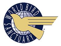 logo-wbs