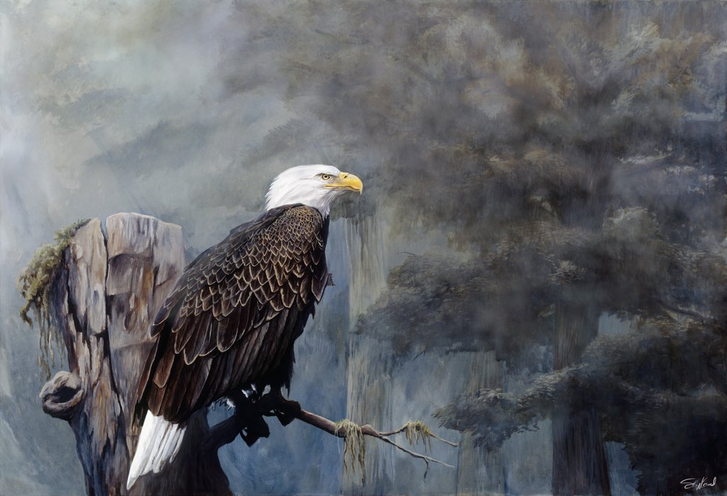 Freedom Haze by Steve Goad