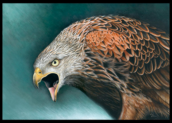'The Red Kite,' original painting by Claudia Hahn